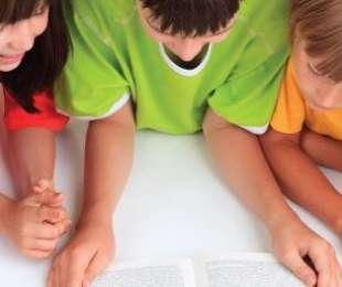 Supporting Boys' Reading Habits (Boys Reading)